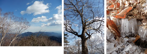 201212三頭山