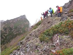 20130611-12南八ヶ岳