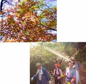 花と温泉トレッキング in 石老山行ってきました